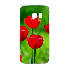 Red Tulip Flowers, Sunny Day Samsung Galaxy S6 Edge Hardshell Case