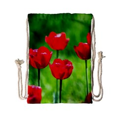Red Tulip Flowers, Sunny Day Drawstring Bag (small) by FunnyCow