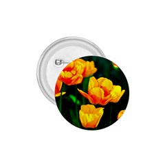 Yellow Orange Tulip Flowers 1 75  Buttons by FunnyCow