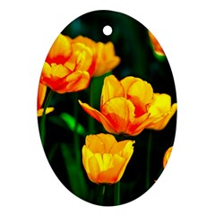 Yellow Orange Tulip Flowers Ornament (oval) by FunnyCow