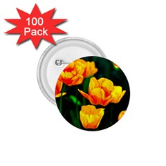 Yellow Orange Tulip Flowers 1 75  Buttons (100 Pack)  by FunnyCow