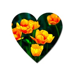 Yellow Orange Tulip Flowers Heart Magnet by FunnyCow
