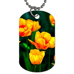Yellow Orange Tulip Flowers Dog Tag (two Sides) by FunnyCow
