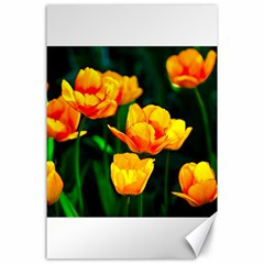 Yellow Orange Tulip Flowers Canvas 24  X 36  by FunnyCow