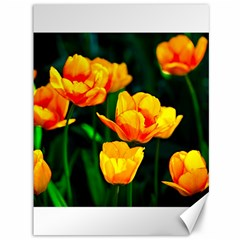 Yellow Orange Tulip Flowers Canvas 36  X 48  by FunnyCow