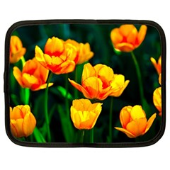 Yellow Orange Tulip Flowers Netbook Case (xxl) by FunnyCow