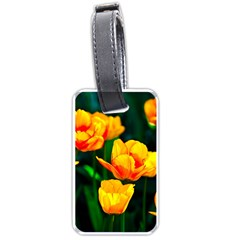Yellow Orange Tulip Flowers Luggage Tags (two Sides) by FunnyCow