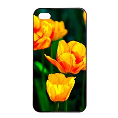 Yellow Orange Tulip Flowers Apple Iphone 4/4s Seamless Case (black) by FunnyCow