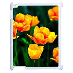 Yellow Orange Tulip Flowers Apple Ipad 2 Case (white) by FunnyCow