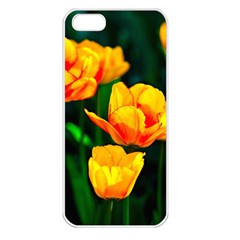 Yellow Orange Tulip Flowers Apple Iphone 5 Seamless Case (white) by FunnyCow