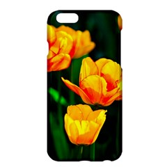 Yellow Orange Tulip Flowers Apple Iphone 6 Plus/6s Plus Hardshell Case