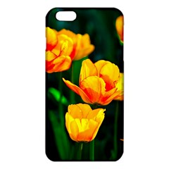 Yellow Orange Tulip Flowers Iphone 6 Plus/6s Plus Tpu Case by FunnyCow