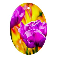Violet Tulip Flowers Oval Ornament (two Sides) by FunnyCow