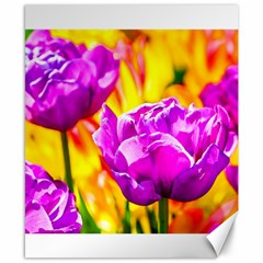 Violet Tulip Flowers Canvas 8  X 10  by FunnyCow
