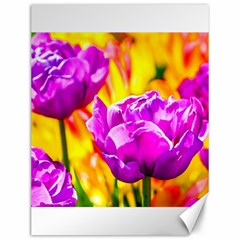 Violet Tulip Flowers Canvas 12  X 16  by FunnyCow