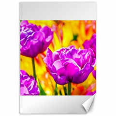 Violet Tulip Flowers Canvas 12  X 18  by FunnyCow