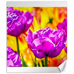 Violet Tulip Flowers Canvas 20  X 24  by FunnyCow