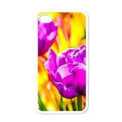Violet Tulip Flowers Apple Iphone 4 Case (white) by FunnyCow