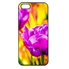 Violet Tulip Flowers Apple Iphone 5 Seamless Case (black) by FunnyCow