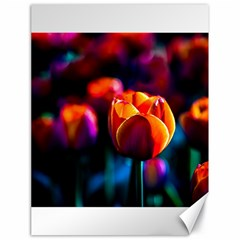 Red Tulips Canvas 18  X 24