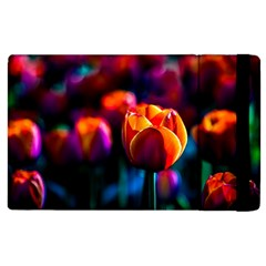 Red Tulips Apple Ipad 3/4 Flip Case by FunnyCow