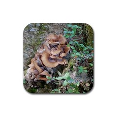 Abstract Of Mushroom Rubber Coaster (square)
