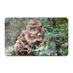 Abstract Of Mushroom Magnet (rectangular) by canvasngiftshop