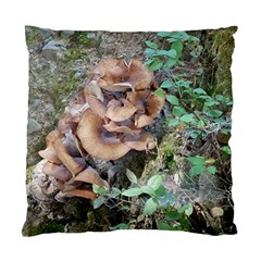 Abstract Of Mushroom Standard Cushion Case (one Side) by canvasngiftshop