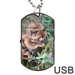 Abstract Of Mushroom Dog Tag Usb Flash (two Sides)