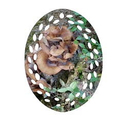 Abstract Of Mushroom Oval Filigree Ornament (two Sides)