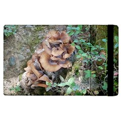 Abstract Of Mushroom Apple Ipad 3/4 Flip Case by canvasngiftshop