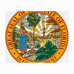 Great Seal Of Florida  Small Glasses Cloth (2 Side) by abbeyz71