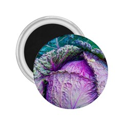 Cabbage Food Green 33315 2 25  Magnets