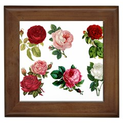 Roses 1770165 1920 Framed Tiles by vintage2030