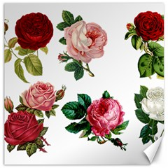 Roses 1770165 1920 Canvas 12  X 12  by vintage2030