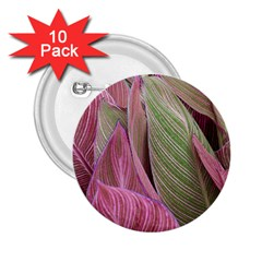 Pink Leaves 2 25  Buttons (10 Pack)  by snowwhitegirl