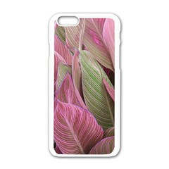Pink Leaves Apple Iphone 6/6s White Enamel Case