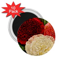 Flowers 1776584 1920 2 25  Magnets (10 Pack)  by vintage2030