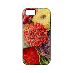 Flowers 1776541 1920 Apple Iphone 5 Classic Hardshell Case (pc+silicone) by vintage2030