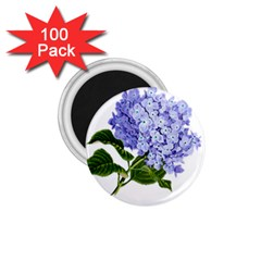 Flower 1775377 1280 1 75  Magnets (100 Pack)  by vintage2030