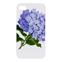 Flower 1775377 1280 Apple Iphone 4/4s Hardshell Case by vintage2030