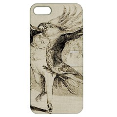 Bird 1515866 1280 Apple Iphone 5 Hardshell Case With Stand by vintage2030