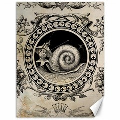 Snail 1618209 1280 Canvas 36  X 48  by vintage2030