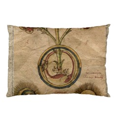 Vintage 1181681 1280 Pillow Case (two Sides) by vintage2030