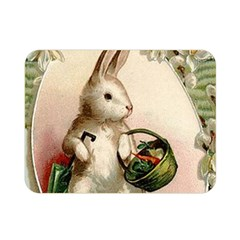 Easter 1225818 1280 Double Sided Flano Blanket (mini)