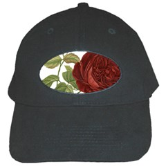 Rose 1077964 1280 Black Cap by vintage2030