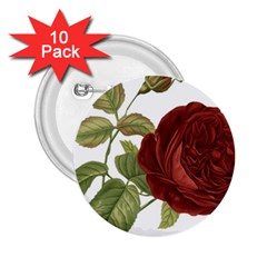 Rose 1077964 1280 2 25  Buttons (10 Pack)  by vintage2030