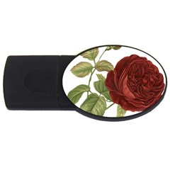 Rose 1077964 1280 Usb Flash Drive Oval (2 Gb) by vintage2030