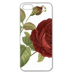 Rose 1077964 1280 Apple Seamless Iphone 5 Case (clear) by vintage2030
