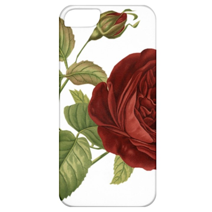 Rose 1077964 1280 Apple iPhone 5 Classic Hardshell Case